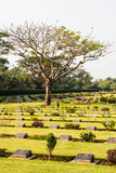 Cemetary world war II Royalty Free Stock Image