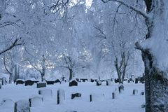 Cemetery. On a cold winter's day Royalty Free Stock Images