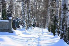Cemetery. Cross  catholic  snow christ jesus Royalty Free Stock Photo