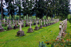 Cemetery. Quiet cemetery surrounded by pine trees, grass and stone crosses stock photography