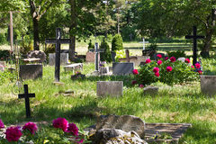 Cemetery. Tombs with crosses on the contemporary cemetery Stock Photos