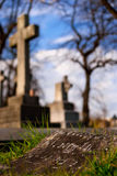 Cemetery. With music on a rock and a cross in the background Stock Image