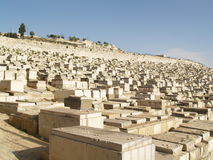 Cemetery. The burial tombs that cover the hillside of the Mt. of Olives Royalty Free Stock Photos
