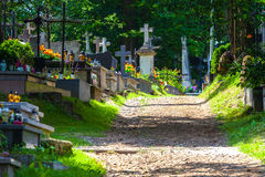 Cemetery alley Royalty Free Stock Photo