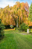 Cemetery in the Altona district of Hamburg Stock Image