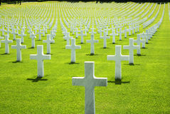 Cemetery of the Americans in Florence. Green grass and crosses Stock Photo