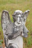 Cemetery Angel Stock Photography