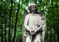 Cemetery angel. Graves on cemetery, angel and vase Royalty Free Stock Photography