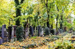 Cemetery in Autumn Stock Photography