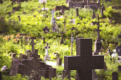 Cemetery with a black cross in focus Stock Image