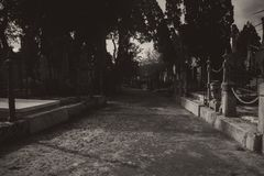The Cemetery in Black and White royalty free stock images