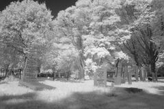 Cemetery in black and white infrared light in Hoogeveen Stock Photo