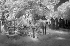 Cemetery in black and white infrared light in Hoogeveen Royalty Free Stock Photo