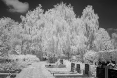 Cemetery in black and white infrared light in Hoogeveen Stock Photography