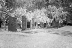 Cemetery in black and white infrared light in Hoogeveen Stock Image