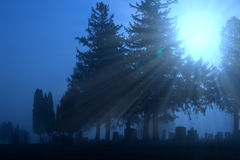 Cemetery in blue fog. Cemetery stones in surreal blue fog morning light Stock Photos