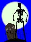Cemetery Bones Royalty Free Stock Photography