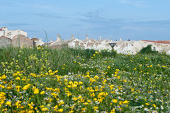 Cemetery in Bonifacio. The tranquil and beautiful cemetery of Bonifacio in Corsica Royalty Free Stock Images