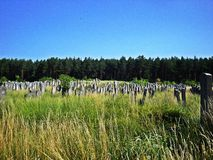 Cemetery in Brody, Ukraine. One of the biggest jewish old cemeteries, Brody. Photo was taken in 2012 Stock Images