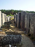 Cemetery in Brody, Ukraine. One of the biggest jewish old cemeteries, Brody. Photo was taken in 2012 Stock Photos