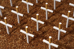 Cemetery of cigarettes Royalty Free Stock Photos