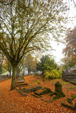 Cemetery in colorful autumn Royalty Free Stock Images