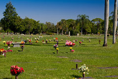 Cemetery with colorful flowers Stock Image