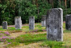 Cemetery Royalty Free Stock Photo
