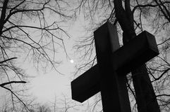 Cemetery cross. The cross in the cemetery and branches reaching the sky Royalty Free Stock Photography