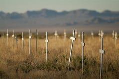 Cemetery Crosses Stock Image