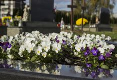 Cemetery, dans of All Saints, All Souls` Day. Graveyard in Croatia. All Saints` Day.n royalty free stock photo
