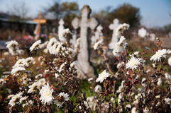 Cemetery Royalty Free Stock Images