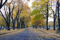 Cemetery entrance on a grey Fall day. stock photography