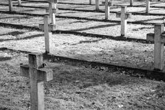 Cemetery in the evening royalty free stock images