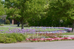 Cemetery flower beds Stock Photo