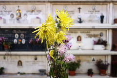 Cemetery flowers Stock Photography