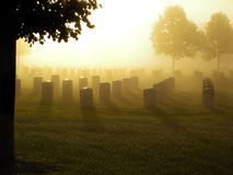 Cemetery in the Fog. National cemetery in the fog on a bright morning Stock Photos