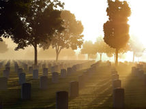 Cemetery in the Fog. National cemetery in the fog on a bright morning Royalty Free Stock Photography