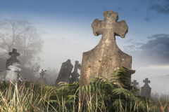 Cemetery in fog Stock Image