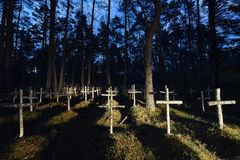Cemetery in the forest. Military cemetery in the forest. Stock Photo
