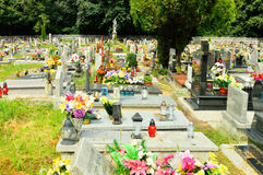 The cemetery full of flowers on a sunny day Stock Photos