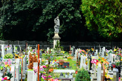 The cemetery full of flowers on a sunny day Royalty Free Stock Photography