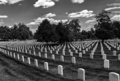 Cemetery full of aligned headstones royalty free stock image