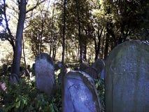 Cemetery. Gravestones in the old Jewish cemetery Stock Photo