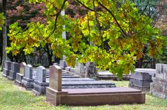 Cemetery / graveyard in autumn Royalty Free Stock Photo