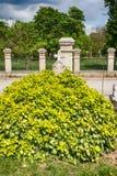 Cemetery/Graveyard in Subotica, Serbia Stock Photo