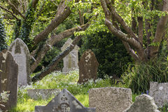Cemetery Gwithian Cornwall Royalty Free Stock Photography