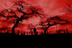 Cemetery with hellfire sky and scary trees. Stock Images