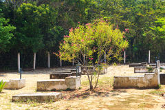 Cemetery on island Ilha Grande, Brazil Stock Photos