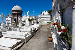 Cemetery of Luarca, Asturias Stock Image